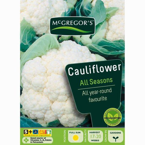 McGregor's All Seasons Cauliflower Vegetable Seeds