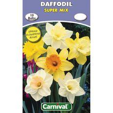 Carnival Daffodil Bulb Super Mix 10 Pack