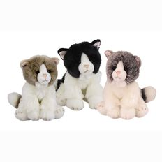 Silky Cats Medium Assorted 18cm
