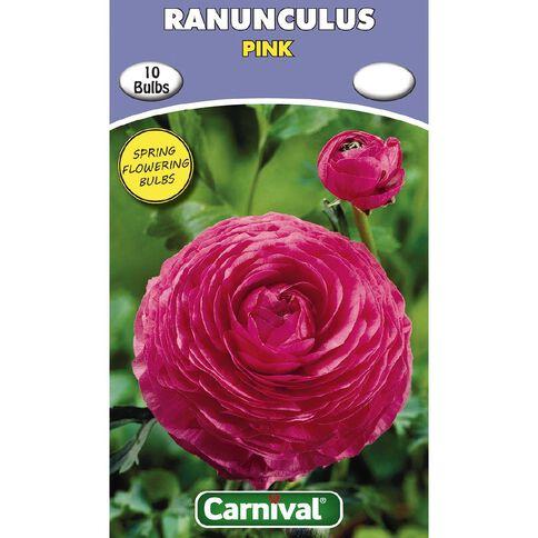 Carnival Ranunculus Bulb Pink 10 Pack
