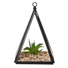 Living & Co Terrarium Triangle