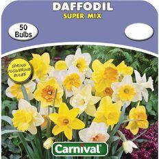Carnival Daffodil Bulb Super Mix 50 Pack