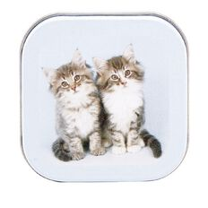 KIDZ 9ct Gold Cat CZ Box Earrings