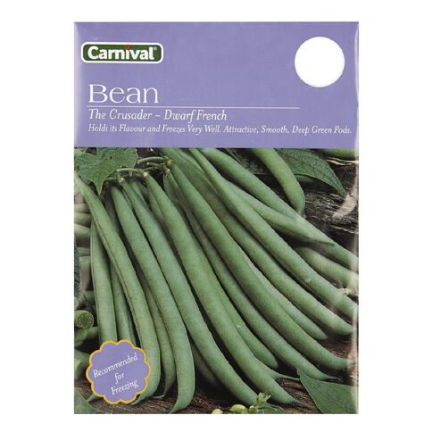 Carnival Dwarf Crusader Bean Vegetable Seeds