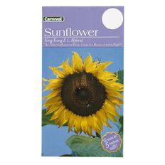 Carnival Seeds Sunflower King Kong
