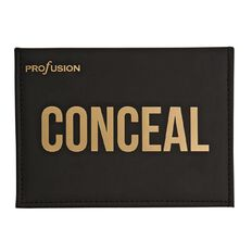 Profusion Conceal Palette 10 Shades