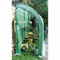 Westminster Wall Greenhouse with 3 Layer Shelf