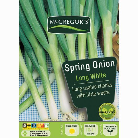 McGregor's Long White Spring Onion Vegetable Seeds