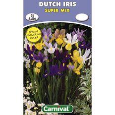 Carnival Dutch Iris Bulb Super Mix 35 Pack