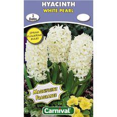 Carnival Hyacinth Bulb White Pearl 3 Pack