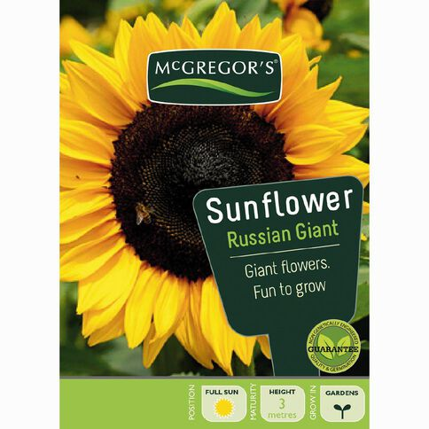 McGregor's Sunflower Russian Giant Flower Seeds
