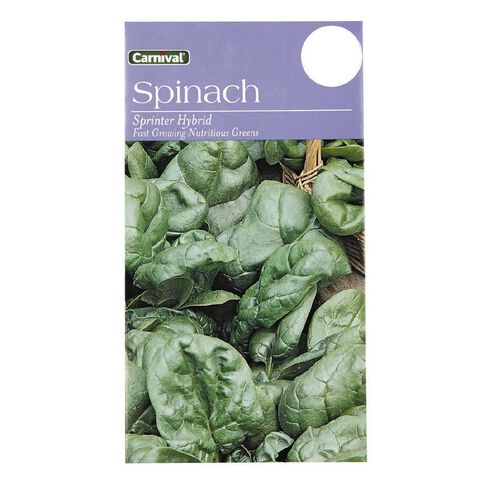 Carnival Spinach Vegetable Seeds