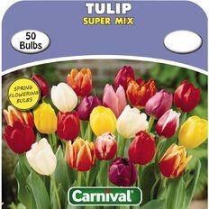 Carnival Tulip Bulb Super Mix 50 Pack