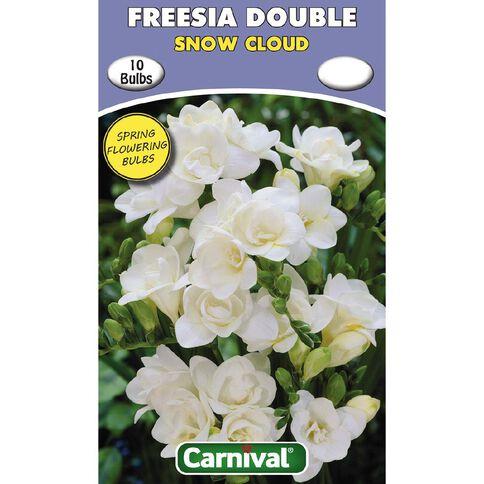 Carnival Freesia Double Bulb Snow Cloud 10 Pack