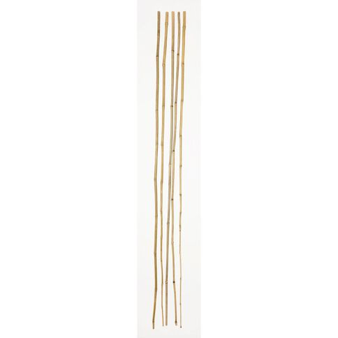 Westminster Bamboo Stakes 7ft 18-20mm 5 Pack