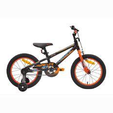 Cyclops 16 inch Boys' Bike-in-a-Box 302