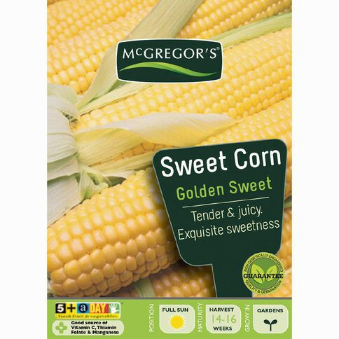 McGregor's Golden Sweet Corn Vegetable Seeds