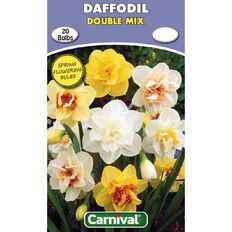 Carnival Daffodil Bulb Double Mix 20 Pack