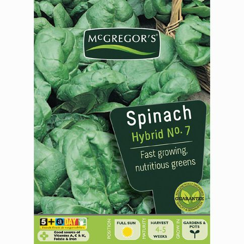 McGregor's Hybrid No.7 Spinach Vegetable Seeds
