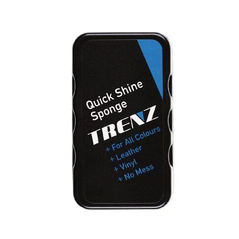 Trendz Quick Shine Sponge