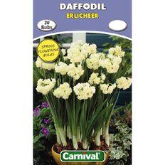 Carnival Daffodil Bulb Erlicheer 20 Pack