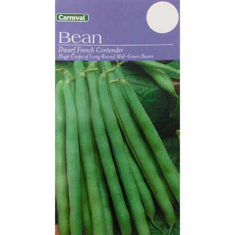 Carnival Dwarf Bean Vegetable Seeds