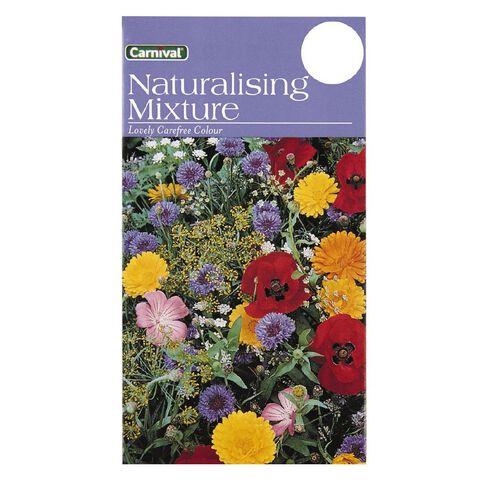 Carnival Seeds Naturalising Mix Flower