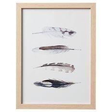 Living & Co Framed Art Feather 30cm x 40cm