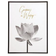 Living & Co Framed Art Lotus 30cm x 40cm