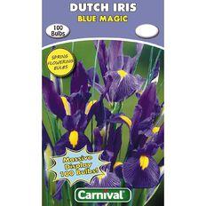 Carnival Dutch Iris Bulb Blue Magic 100 Pack