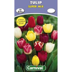 Carnival Tulip Bulb Super Mix 20 Pack