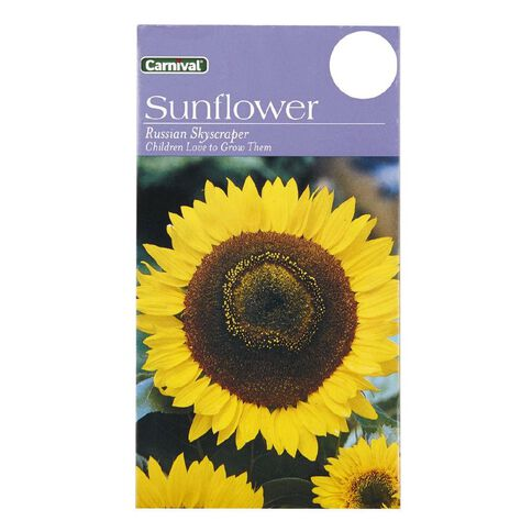 Carnival Seeds Russia Sunflower Flower