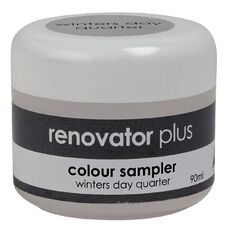 Renovator Plus Test Pot Winters Day Quarter 90ml