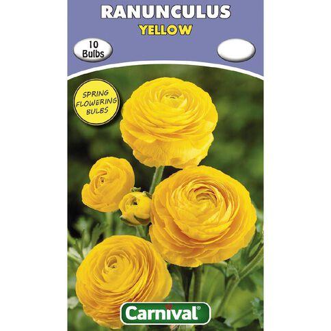 Carnival Ranunculus Bulb Yellow 10 Pack