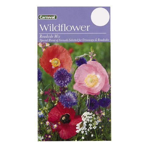 Carnival Seeds Wildflower Roadside Mix
