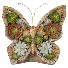 Wall Art Butterfly Succulent 34.5cm