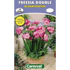 Carnival Freesia Double Bulb Bloemfontein 10 Pack