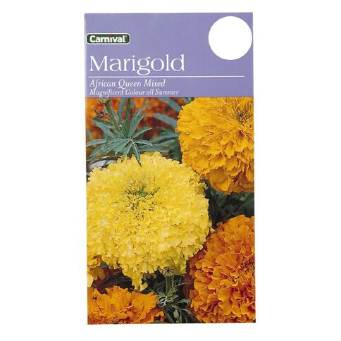 Carnival African Queen Marigold Flower Seeds