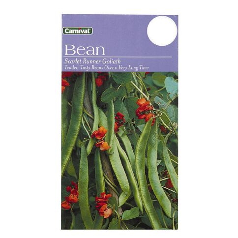 Carnival Scarlet Runner Bean Vegetable Seeds