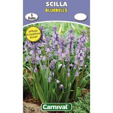 Carnival Scilla Bulb Bluebells 5 Pack