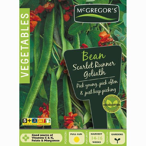 McGregor's Goliath Scarlet Runner Beans Vegetable Seeds
