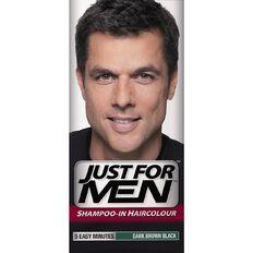 Just For Men Hair Brown Black