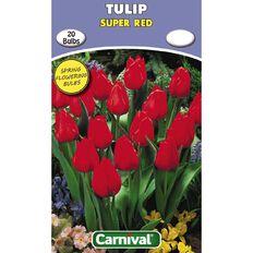 Carnival Tulip Bulb Super Red 20 Pack