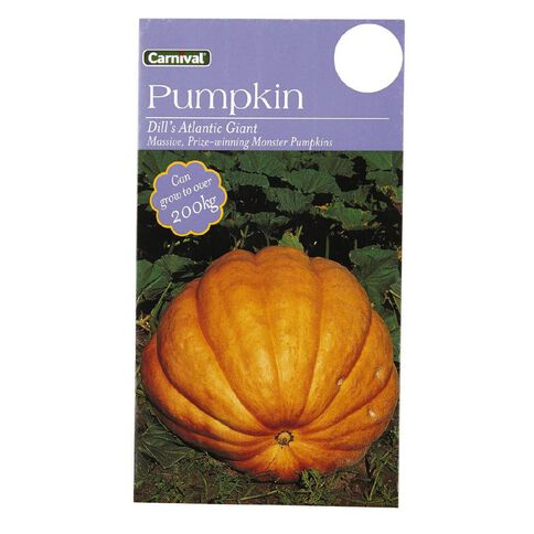 Carnival Pumpkin Dill's Atlantic Giant