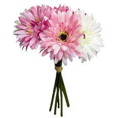 Gerbera Bunch 6 Stems Pink 27cm