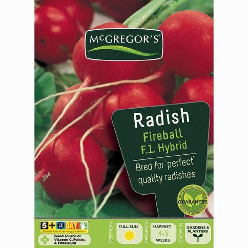 McGregor's F1 Hybrid Fireball Radish Vegetable Seeds