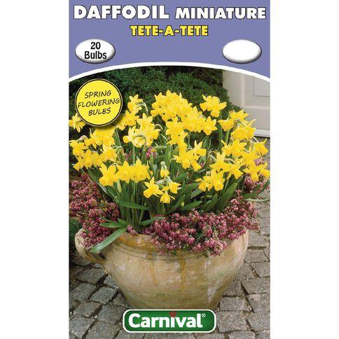 Carnival Daffodil Bulb Tete-a-Tete 20 Pack
