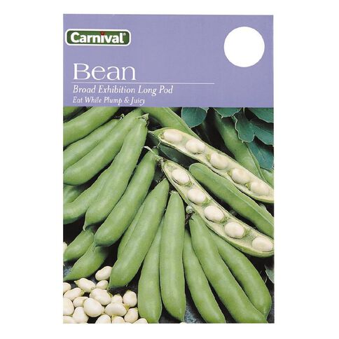 Carnival Beans Vegetable Seeds