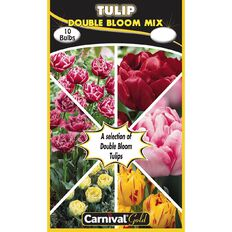 Carnival Gold Tulip Bulb Double Mix 10 Pack