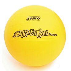 Avaro Volleyball